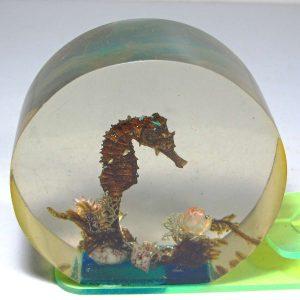 Akrilik Kağıt Ağırlığı Plastik-Polyester Objeler Deniz Atı